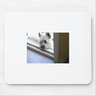 Zoe Cairn Terrier Mouse Pad