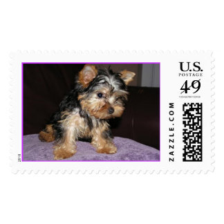 Zoe stamp2.jpg sellos postales