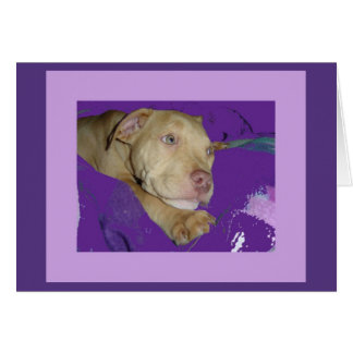 Zoe with purple border card