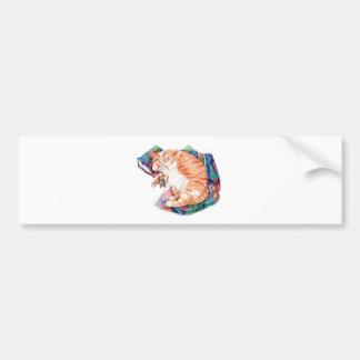 Zoe's Winter Nap Bumper Sticker