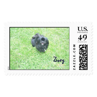 Zoey Stamps