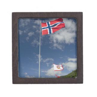 Zona portuaria histórica céntrica de Bergen con la Cajas De Recuerdo De Calidad