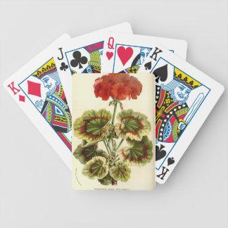 Zonal Geranium Bicycle Playing Cards