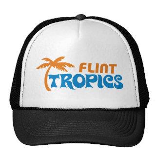 Zonas tropicales del pedernal gorras de camionero