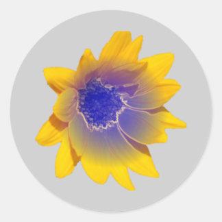 zonnebloem-metalic yellow/bleu classic round sticker