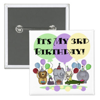 Zoo Animals 3rd Birthday Tshirts and Gifts Pin
