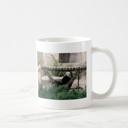 Zoo Animals Coffee Mugs