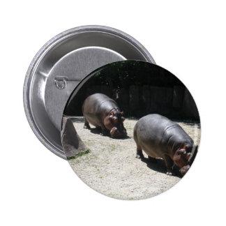 Zoo Animals Pinback Button