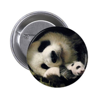 zoo-atlanta_giant_panda_lun-lun_and_cub button