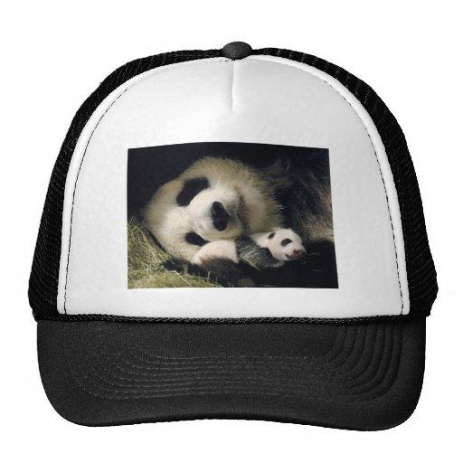 zoo-atlanta_giant_panda_lun-lun_and_cub mesh hats