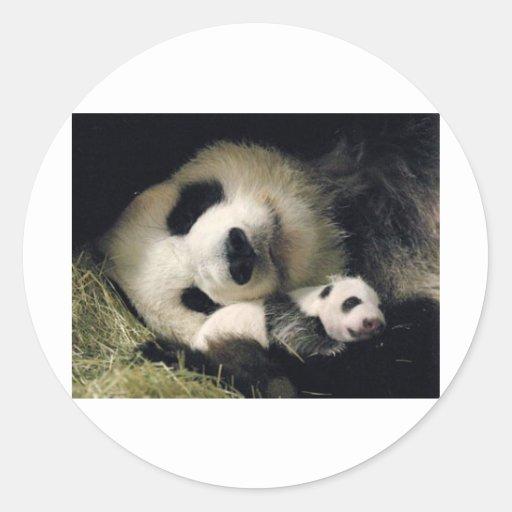 zoo-atlanta_giant_panda_lun-lun_and_cub stickers