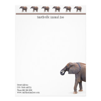 Zoo Business Card