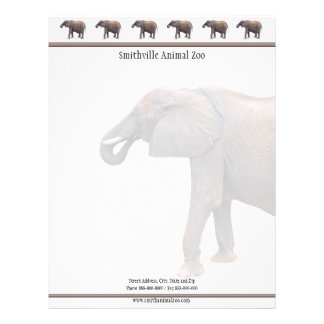 Zoo Business Card Letterhead