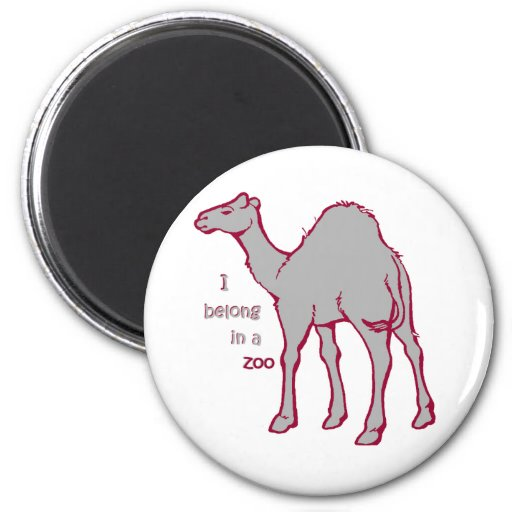 Zoo Camel 2 Inch Round Magnet