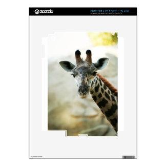 Zoo Giraffe iPad 3 Decal