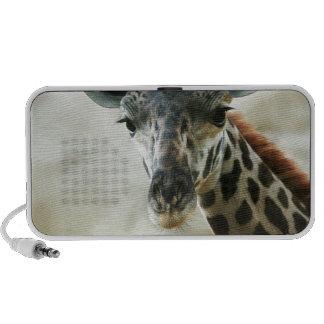 Zoo Giraffe Speaker