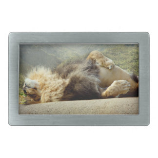 Zoo Lion Dreaming of a Jungle Belt Buckle