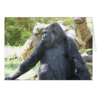 Zoo Series, Gorilla, Deep in Thought Card