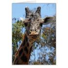 Zoo Series, Here's Lookin' At You Giraffe Card