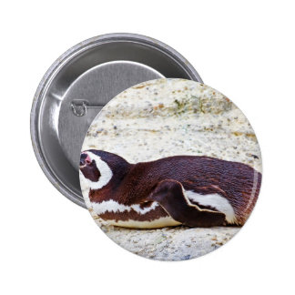 Zoo Subject 2 Inch Round Button