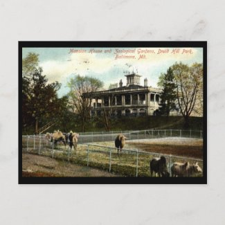 Zoological Gardens, Druid Hill Park, Baltimore Vin postcard