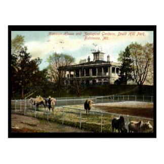 Zoological Gardens Druid Hill Park Baltimore Vin Postcards