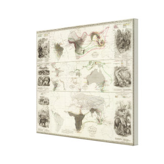 Zoological geography canvas print