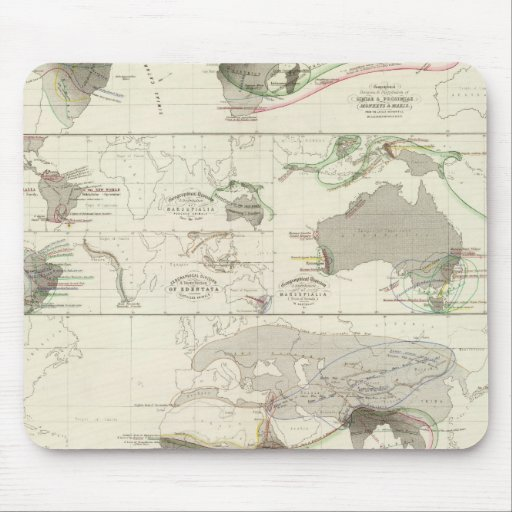 Zoological geography mouse pad