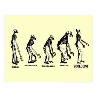 Zoologist Zoology Naturalist Science Evolution Postcard