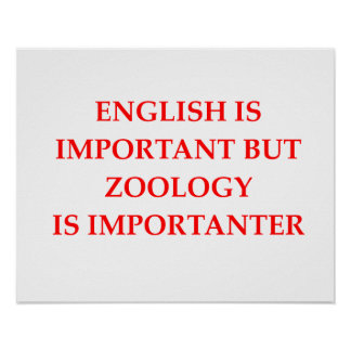 zoology poster