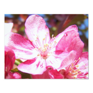 Zoomed in Crabapple Blossoms Card