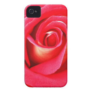 Zoomed Red Rose Floral iPhone 4/4s Case