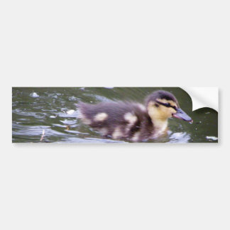 Zooming Duckling Bumper Sticker
