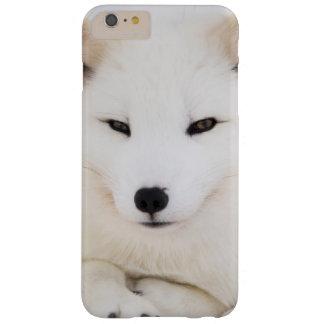 Zorro ártico blanco funda barely there iPhone 6 plus