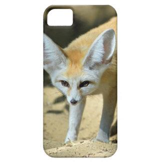 Zorro de Fennec iPhone 5 Carcasas