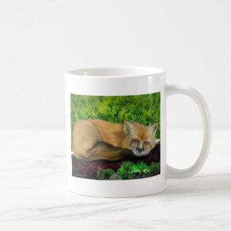 zorro el dormir tazas de café