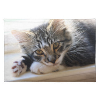 Zorro Kitten by the Window Placemat