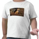 zorro rojo, vulpes del Vulpes, en colores de la Camiseta
