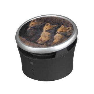 zorro rojo, vulpes del Vulpes, equipos fuera de su Altavoz Con Bluetooth