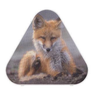 zorro rojo, vulpes del Vulpes, perrito que se Altavoz Bluetooth
