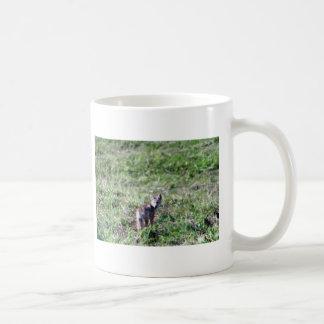zorro salvaje taza de café