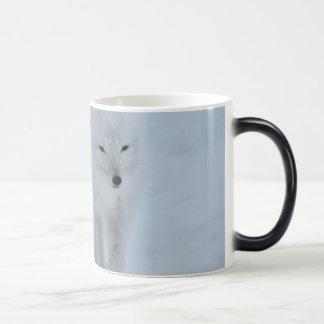 zorro taza