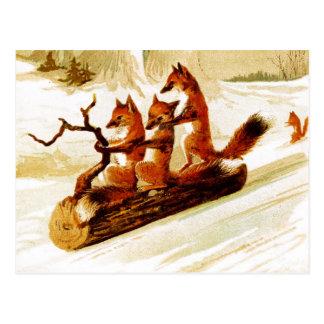 Zorros Sledding a través de la nieve en un Tarjetas Postales