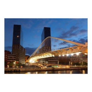 Zubi Zuri Bridge Photo Print