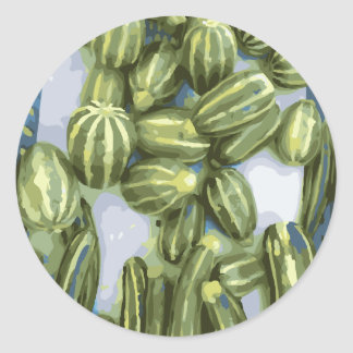 Zucchini and Winter Squash Harvest Classic Round Sticker
