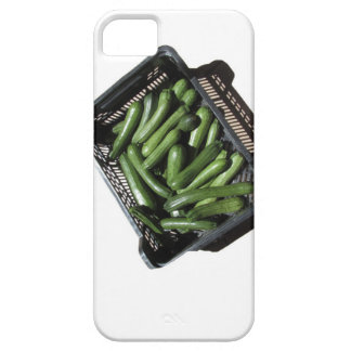 Zucchini in box on white background iPhone SE/5/5s case