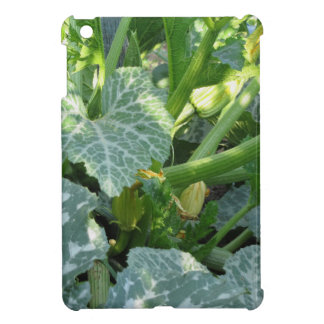 Zucchini plant in blossom in the garden in Tuscany Case For The iPad Mini