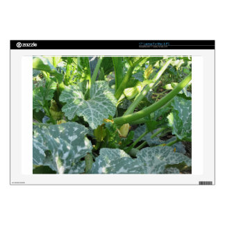 """Zucchini plant in blossom in the garden in Tuscany Decals For 17"""" Laptops"""