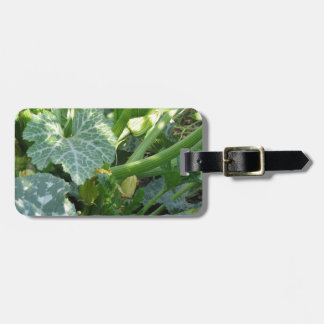 Zucchini plant in blossom in the garden in Tuscany Luggage Tag