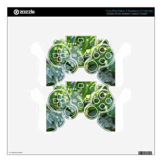 Zucchini plant in blossom in the garden in Tuscany Skins For PS3 Controllers